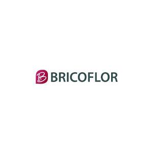 Code Remise Bricoflor en août 2020